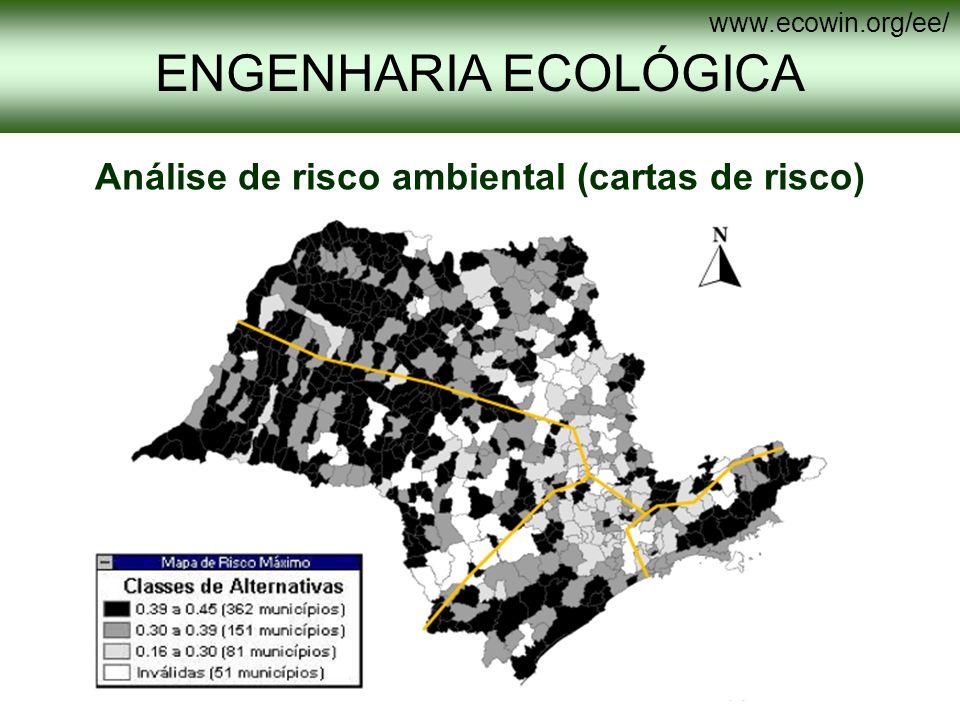 ENGENHARIA ECOLÓGICA www.ecowin.org/ee/ Análise de risco ambiental (cartas de risco)