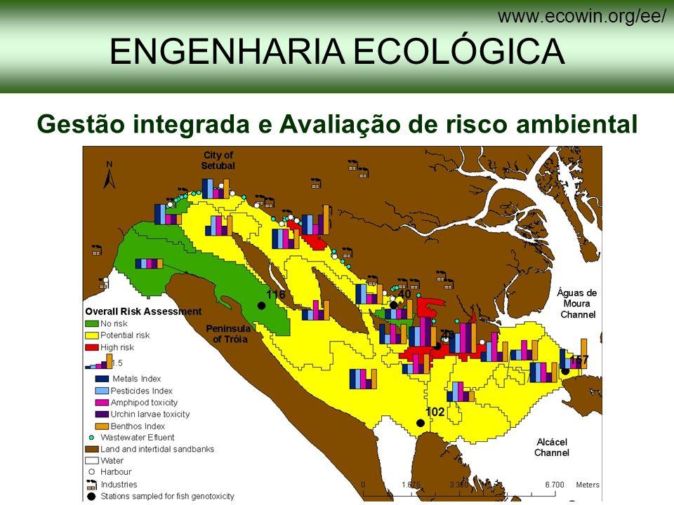 ENGENHARIA ECOLÓGICA www.ecowin.org/ee/ Detecção remota na análise de risco