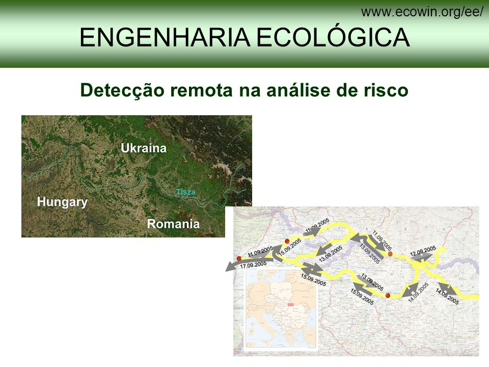 O perfil de Engenharia Ecológica da licenciatura em Engenharia do Ambiente pretende formar profissionais que actuarão a nível nacional e internacional.
