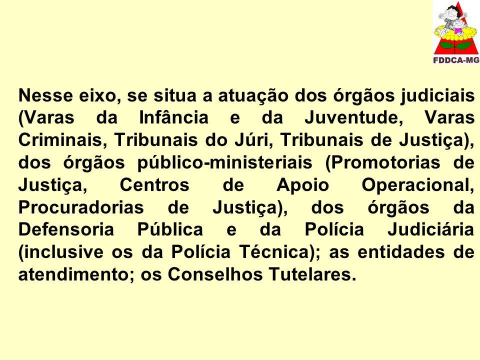 Nesse eixo, se situa a atuação dos órgãos judiciais (Varas da Infância e da Juventude, Varas Criminais, Tribunais do Júri, Tribunais de Justiça), dos órgãos público-ministeriais (Promotorias de Justiça, Centros de Apoio Operacional, Procuradorias de Justiça), dos órgãos da Defensoria Pública e da Polícia Judiciária (inclusive os da Polícia Técnica); as entidades de atendimento; os Conselhos Tutelares.