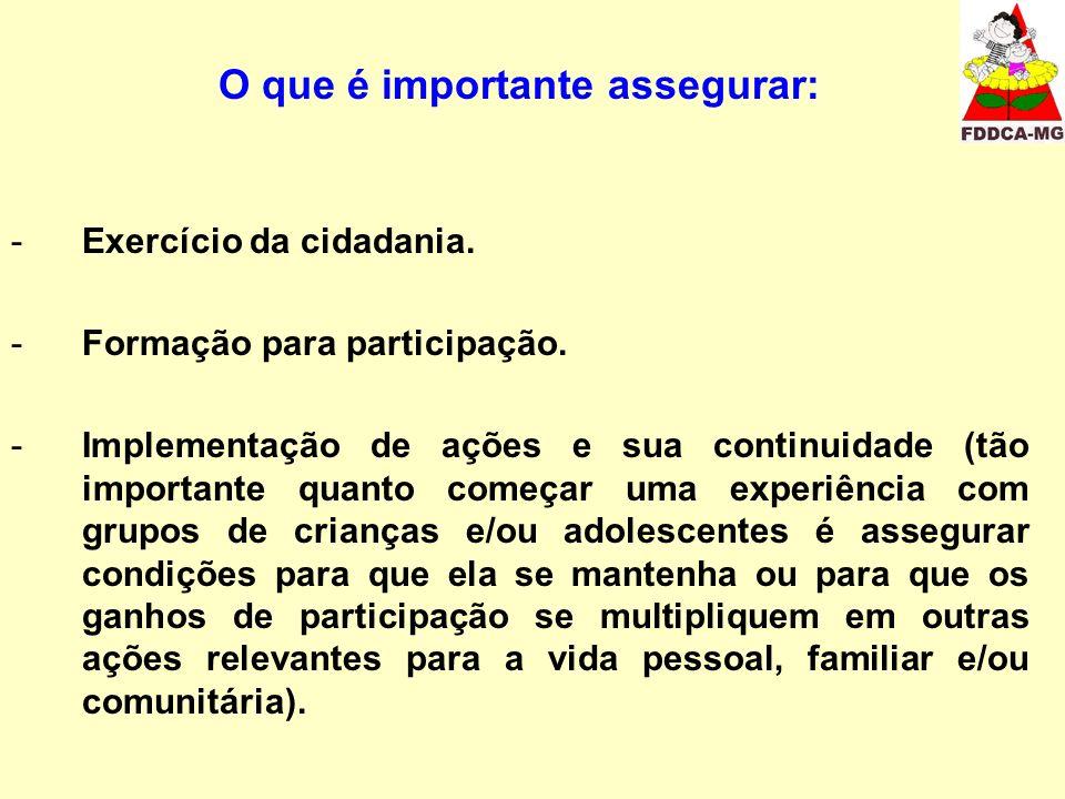 O que é importante assegurar: -Exercício da cidadania. -Formação para participação. -Implementação de ações e sua continuidade (tão importante quanto