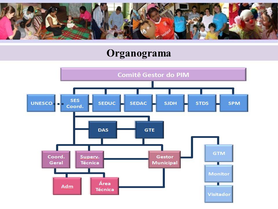 Estrutura 1 monitor para cada 5 visitadores 1 visitador = 25 famílias Educação, Assistência Social e Saúde- vinculado à Atenção Básica.