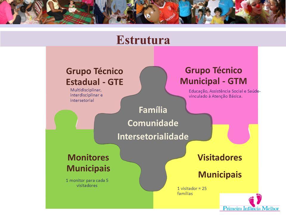 Estrutura 1 monitor para cada 5 visitadores 1 visitador = 25 famílias Educação, Assistência Social e Saúde- vinculado à Atenção Básica. Multidisciplin