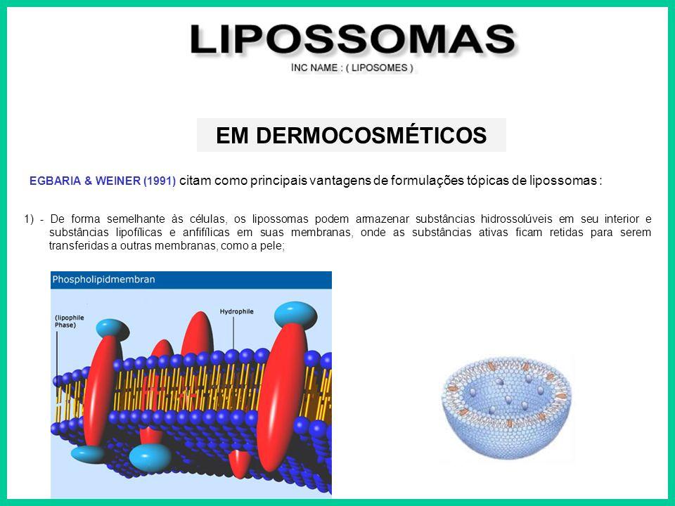 EGBARIA & WEINER (1991) citam como principais vantagens de formulações tópicas de lipossomas : EM DERMOCOSMÉTICOS 1) - De forma semelhante às células,