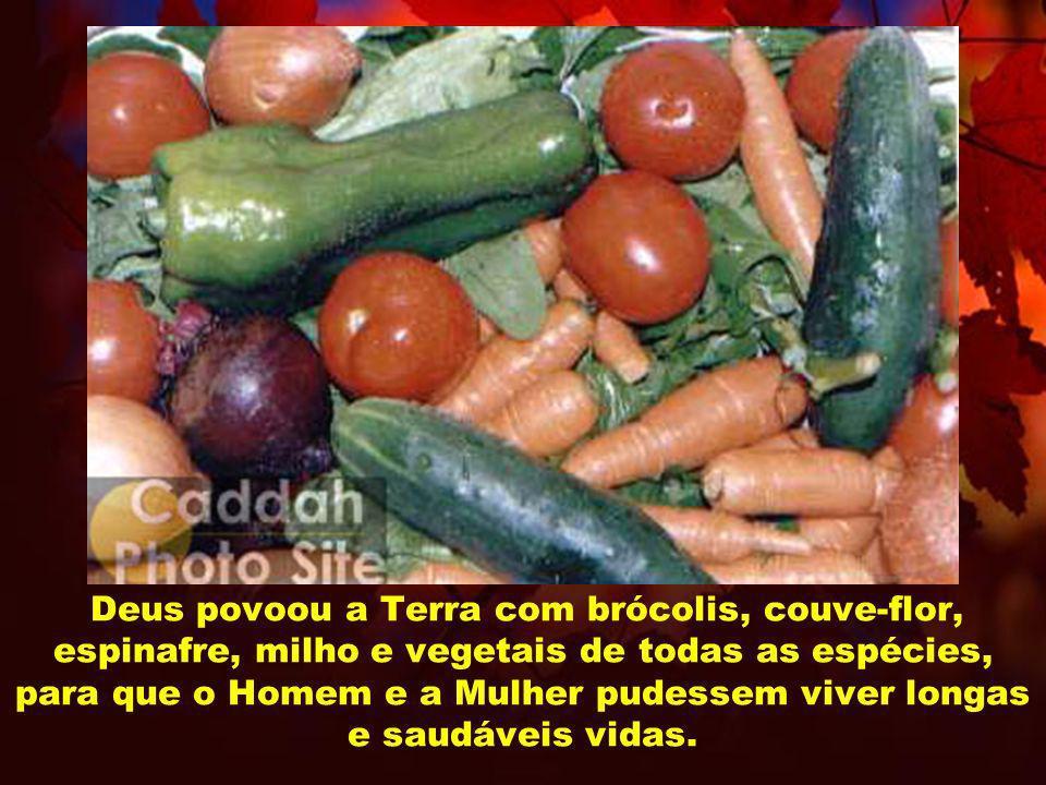 Deus povoou a Terra com brócolis, couve-flor, espinafre, milho e vegetais de todas as espécies, para que o Homem e a Mulher pudessem viver longas e sa