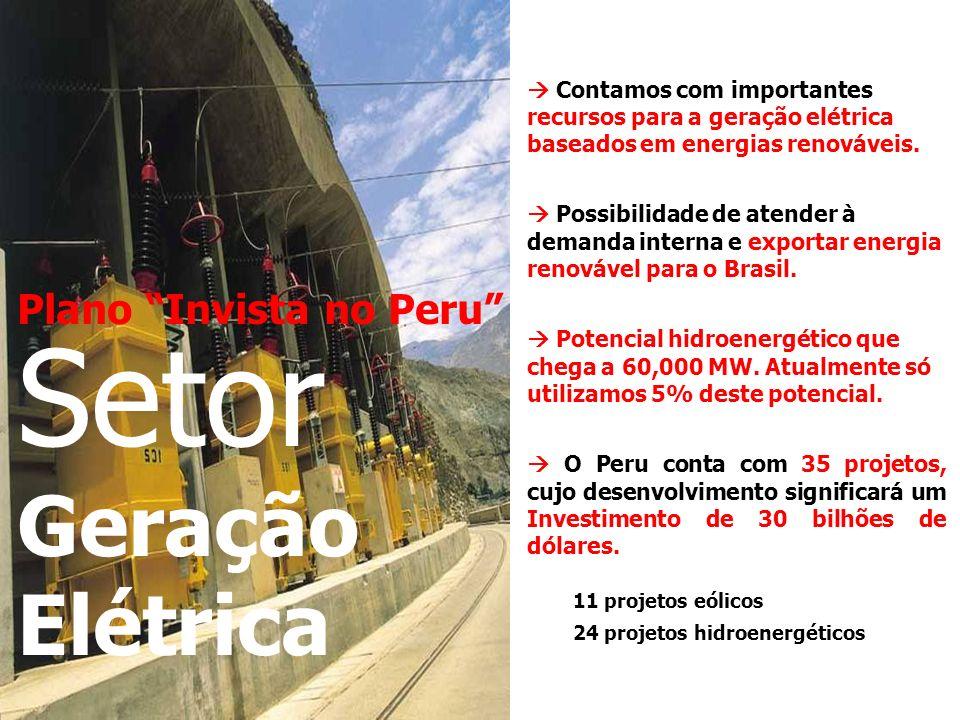 Plano Invista no Peru Setor Geração Elétrica Contamos com importantes recursos para a geração elétrica baseados em energias renováveis.
