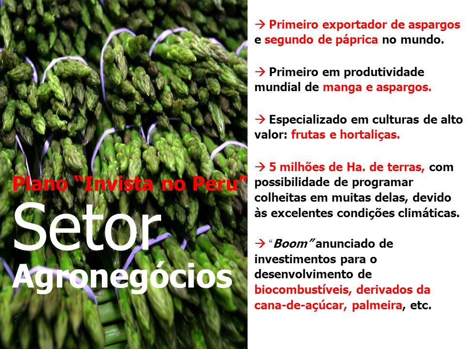 Plano Invista no Peru Setor Agronegócios Primeiro exportador de aspargos e segundo de páprica no mundo.
