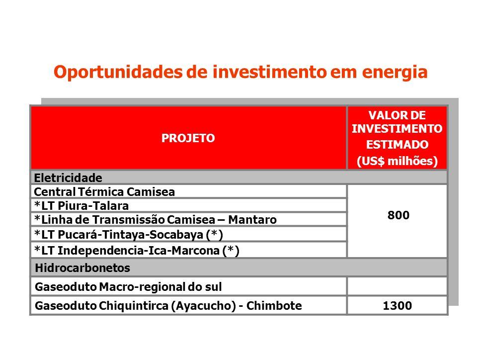 PROJETO VALOR DE INVESTIMENTO ESTIMADO (US$ milhões) Eletricidade Central Térmica Camisea 800 *LT Piura-Talara *Linha de Transmissão Camisea – Mantaro *LT Pucará-Tintaya-Socabaya (*) *LT Independencia-Ica-Marcona (*) Hidrocarbonetos Gaseoduto Macro-regional do sul Gaseoduto Chiquintirca (Ayacucho) - Chimbote1300 Oportunidades de investimento em energia