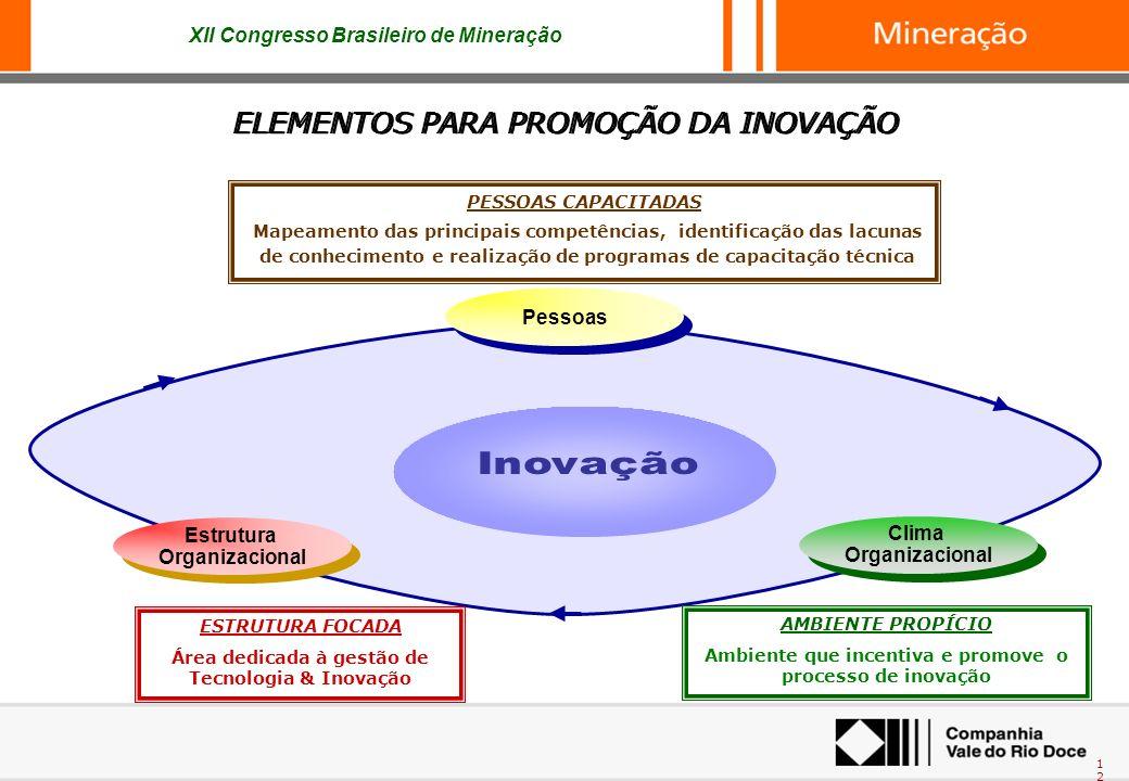 XII Congresso Brasileiro de Mineração 12 ELEMENTOS PARA PROMOÇÃO DA INOVAÇÃO AMBIENTE PROPÍCIO Ambiente que incentiva e promove o processo de inovação