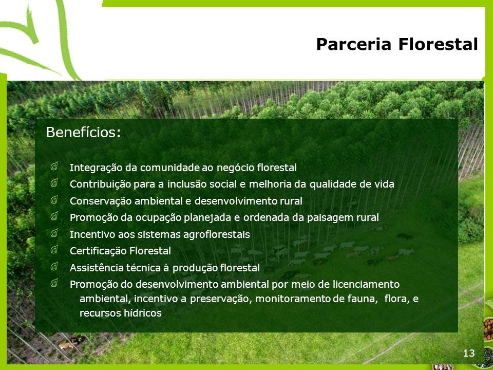 13 Integração da comunidade ao negócio florestal Contribuição para a inclusão social e melhoria da qualidade de vida Conservação ambiental e desenvolv