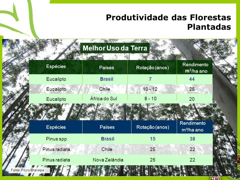 15 Espécies PaísesRotação (anos) Rendimento /ha ano EucaliptoBrasil744 Eucalipto20 Fonte: Pöyry/Bracelpa Produtividade das Florestas Plantadas Eucalip