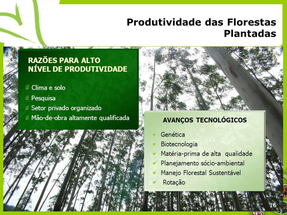 16 Produtividade das Florestas Plantadas 16 RAZÕES PARA ALTO NÍVEL DE PRODUTIVIDADE Clima e solo Pesquisa Setor privado organizado Mão-de-obra altamen