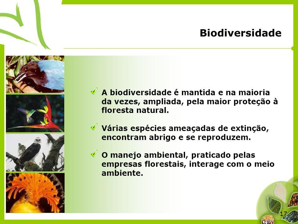 17 A biodiversidade é mantida e na maioria da vezes, ampliada, pela maior proteção à floresta natural. Várias espécies ameaçadas de extinção, encontra