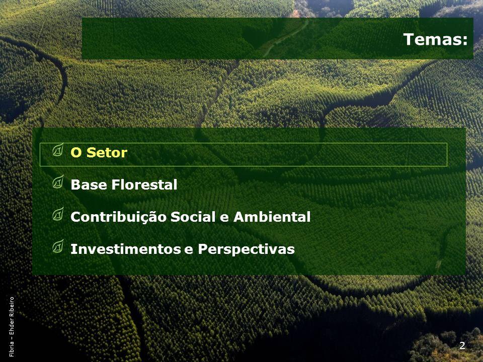 23 Matriz Energética 1970 - 2009 Fonte: Balanço Energético Nacional * Subproduto (Biomassa)