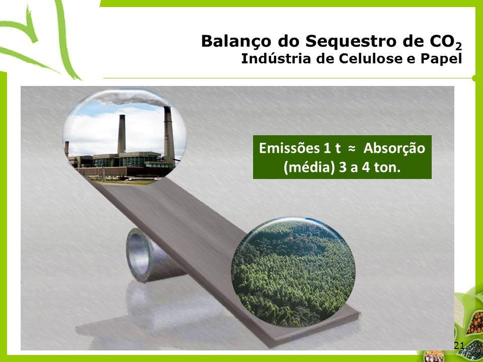 21 Balanço do Sequestro de CO 2 Indústria de Celulose e Papel Emissões 1 t Absorção (média) 3 a 4 ton.