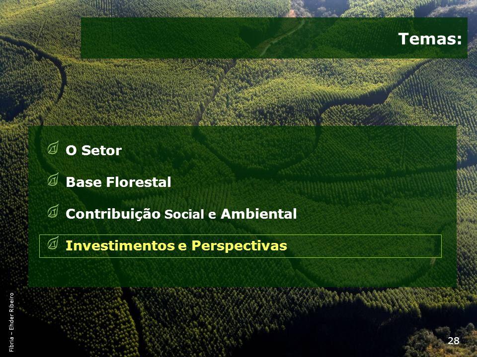 28 Temas: O Setor Base Florestal Contribuição Social e Ambiental Investimentos e Perspectivas Fibria – Ehder Ribeiro