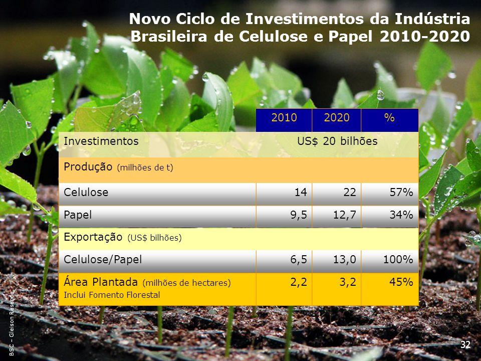 32 Novo Ciclo de Investimentos da Indústria Brasileira de Celulose e Papel 2010-2020 20102020% InvestimentosUS$ 20 bilhões Produção (milhões de t) Cel