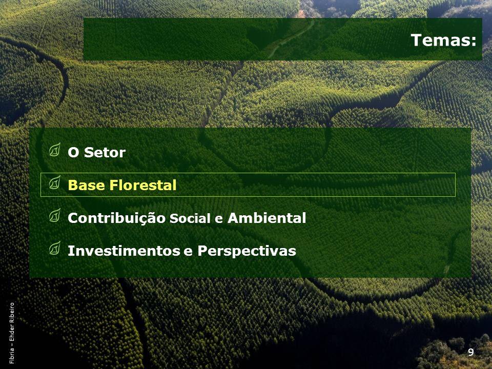 10 Uso da Terra no Brasil Brasil 851 % do Total de Terras Total de Área Preservada e Outros Usos * 52962.2% Total Terra Cultivável31537.0% - Terras Cultiváveis – por cultura728.5% Soja222.6% Milho141.7% Cana de Açúcar91.0% Café20.2% Algodão10.1% Laranja10.1% - Pastagens17220.2% - Terras disponíveis718.3% Florestas Plantadas70.8% Fonte: IBGE, CAN, Conab, Min.