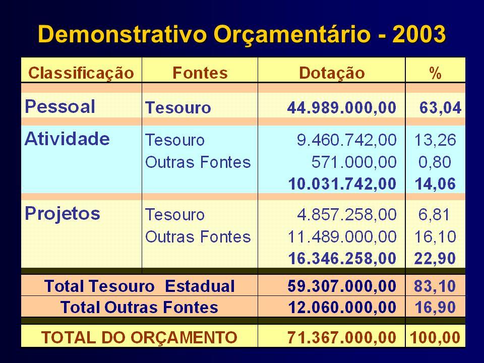 Demonstrativo Orçamentário - 2003