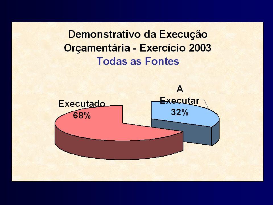 Demonstrativo Execução Orçamentária - 2003
