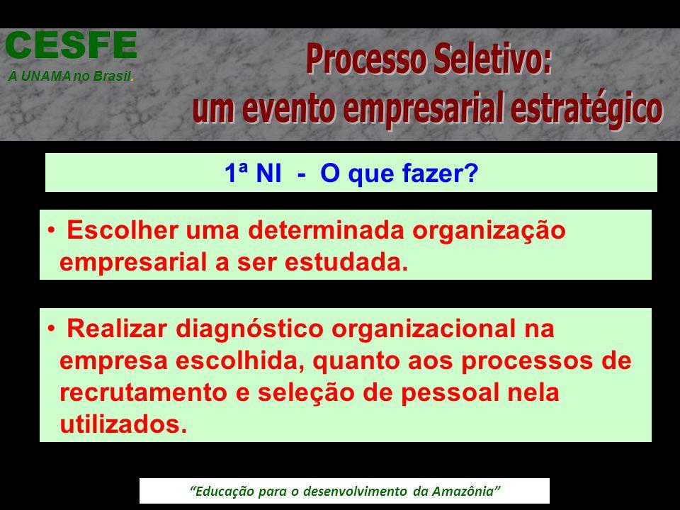 Educação para o desenvolvimento da Amazônia 1ª NI - O que fazer? CESFE A UNAMA no Brasil. Escolher uma determinada organização empresarial a ser estud