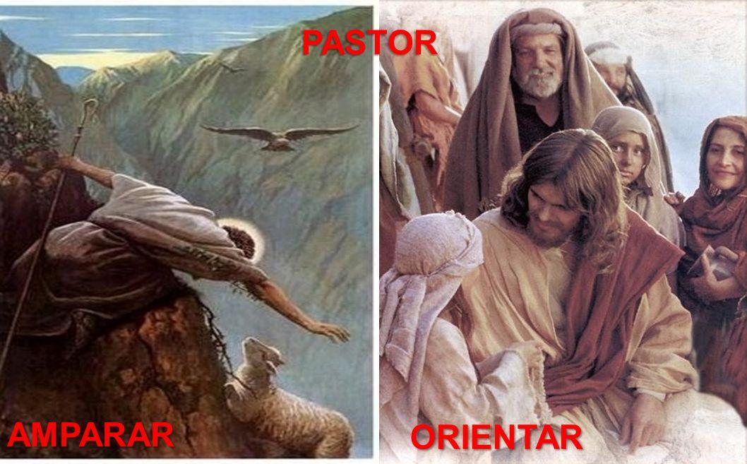 AMPARAR ORIENTAR PASTOR PASTOR