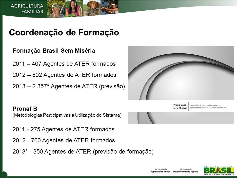 Coordenação de Formação Formação Brasil Sem Miséria 2011 – 407 Agentes de ATER formados 2012 – 802 Agentes de ATER formados 2013 – 2.357* Agentes de ATER (previsão) Pronaf B (Metodologias Participativas e Utilização do Sistema) 2011 - 275 Agentes de ATER formados 2012 - 700 Agentes de ATER formados 2013* - 350 Agentes de ATER (previsão de formação)