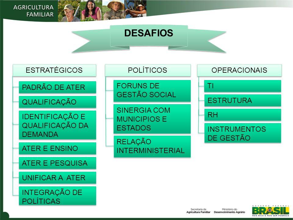 DESAFIOS OPERACIONAIS POLÍTICOS ESTRATÉGICOS TI PADRÃO DE ATER QUALIFICAÇÃO IDENTIFICAÇÃO E QUALIFICAÇÃO DA DEMANDA ATER E ENSINO ATER E PESQUISA UNIFICAR A ATER INTEGRAÇÃO DE POLÍTICAS FORUNS DE GESTÃO SOCIAL SINERGIA COM MUNICIPIOS E ESTADOS RELAÇÃO INTERMINISTERIAL ESTRUTURA RH INSTRUMENTOS DE GESTÃO