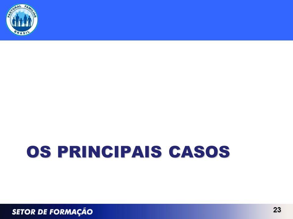 OS PRINCIPAIS CASOS 23