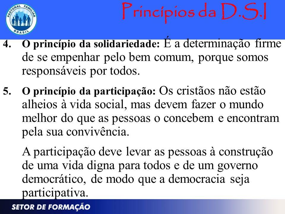 Princípios da D.S.I 4. O princípio da solidariedade: É a determinação firme de se empenhar pelo bem comum, porque somos responsáveis por todos. 5.O pr