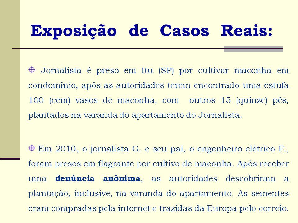 Exposição de Casos Reais: Jornalista é preso em Itu (SP) por cultivar maconha em condomínio, após as autoridades terem encontrado uma estufa 100 (cem)