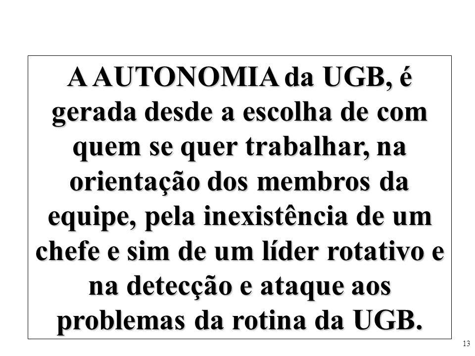 13 A AUTONOMIA da UGB, é gerada desde a escolha de com quem se quer trabalhar, na orientação dos membros da equipe, pela inexistência de um chefe e si
