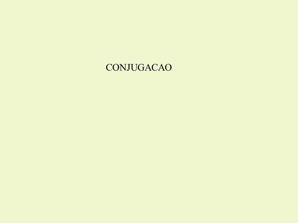 CONJUGACAO