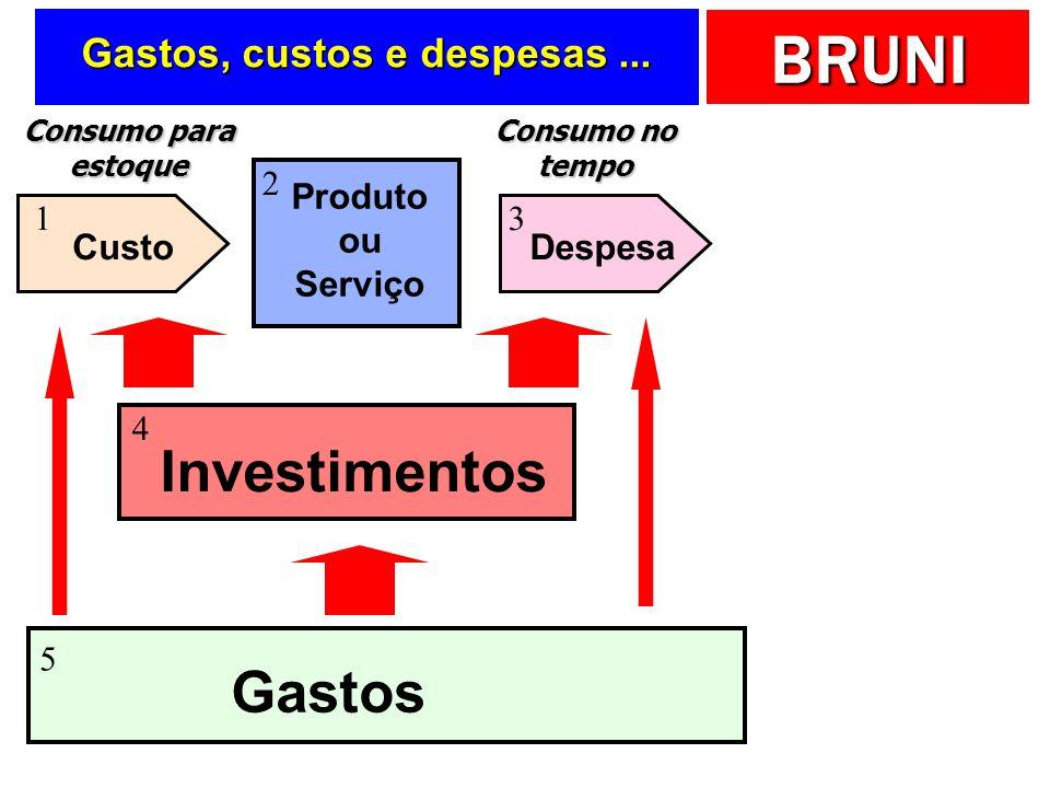 BRUNI Pensando sobre a … Terminologia dos gastos