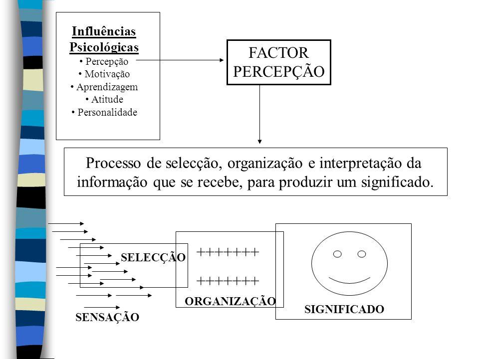 Influências Psicológicas Percepção Motivação Aprendizagem Atitude Personalidade FACTOR PERCEPÇÃO Processo de selecção, organização e interpretação da informação que se recebe, para produzir um significado.