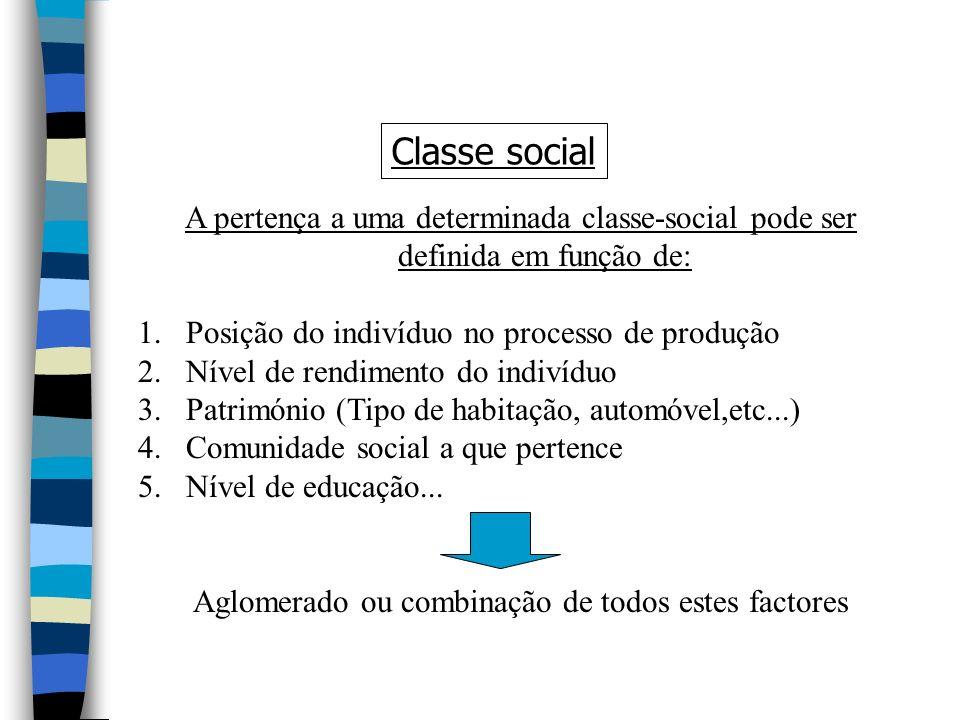 A pertença a uma determinada classe-social pode ser definida em função de: 1.Posição do indivíduo no processo de produção 2.Nível de rendimento do indivíduo 3.Património (Tipo de habitação, automóvel,etc...) 4.Comunidade social a que pertence 5.Nível de educação...