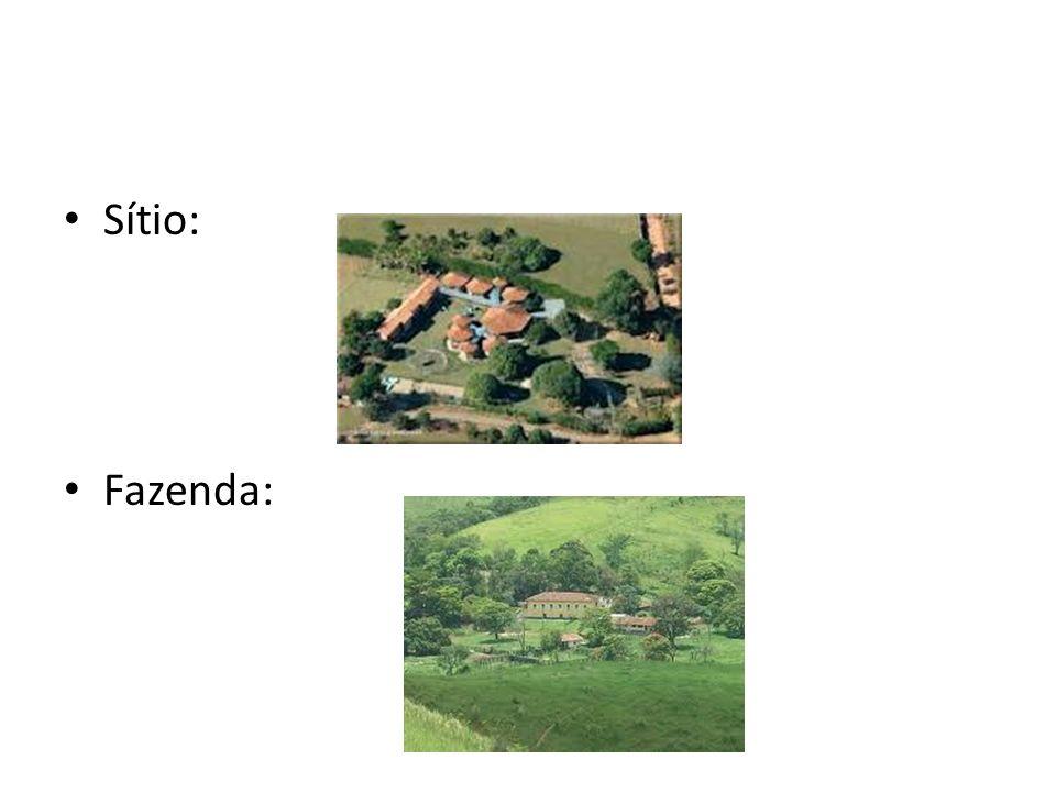 Sítio: Fazenda: