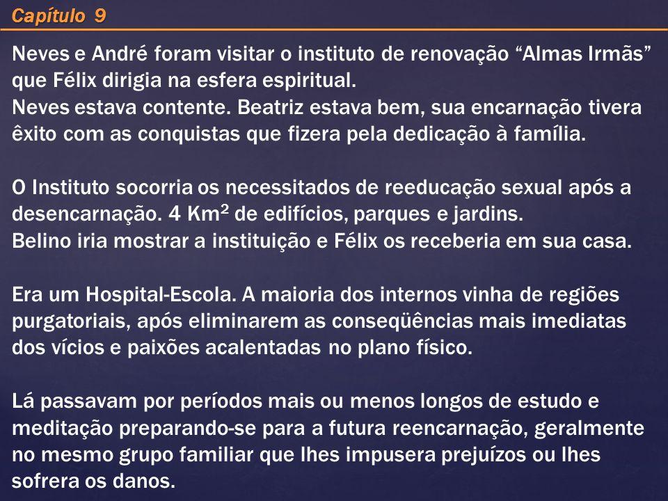 Capítulo 9 Neves e André foram visitar o instituto de renovação Almas Irmãs que Félix dirigia na esfera espiritual. Neves estava contente. Beatriz est