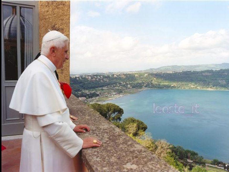3. No almoço em Castel Gandolfo, quando se reuniu com Bento XVI, este teria confidenciado ao Papa Francisco que uma das causas que influenciaram a sua