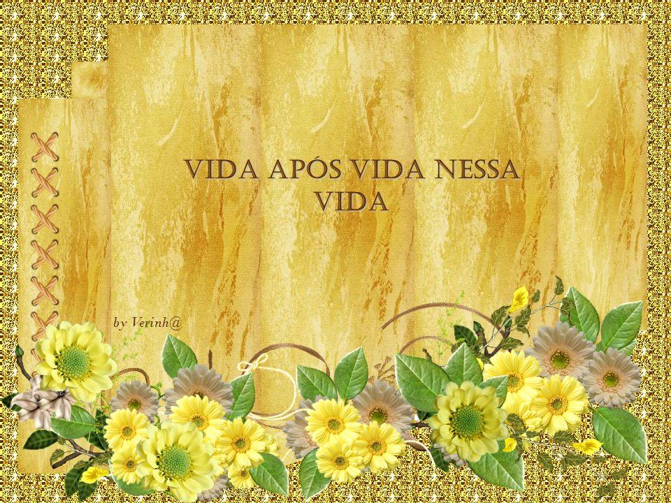 VIDA APÓS VIDA NESSA VIDA by Verinh@