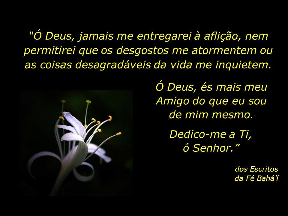 Ó Deus, refresca e alegra meu espírito. Purifica meu coração. Ilumina meus poderes. Em Tuas mãos confio todos os meus interesses. És meu Guia e meu Re
