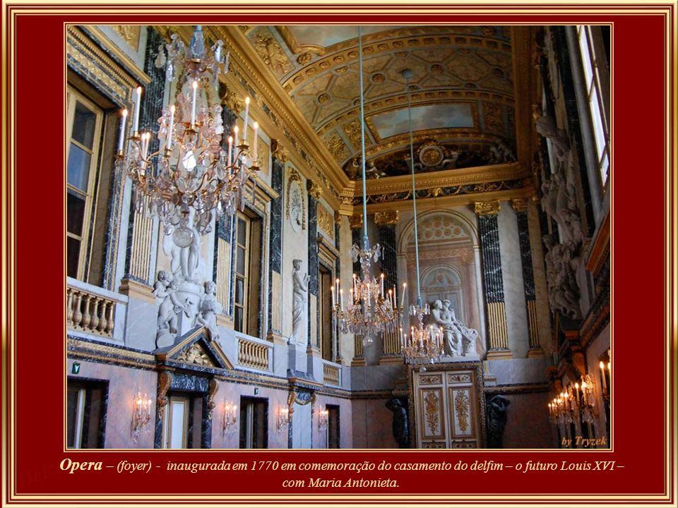 Salão da Paz – ( detalhe) – representa a glória da França. A decoração se assemelha à da sala da guerra, mas em vez de símbolos bélicos ostenta instru