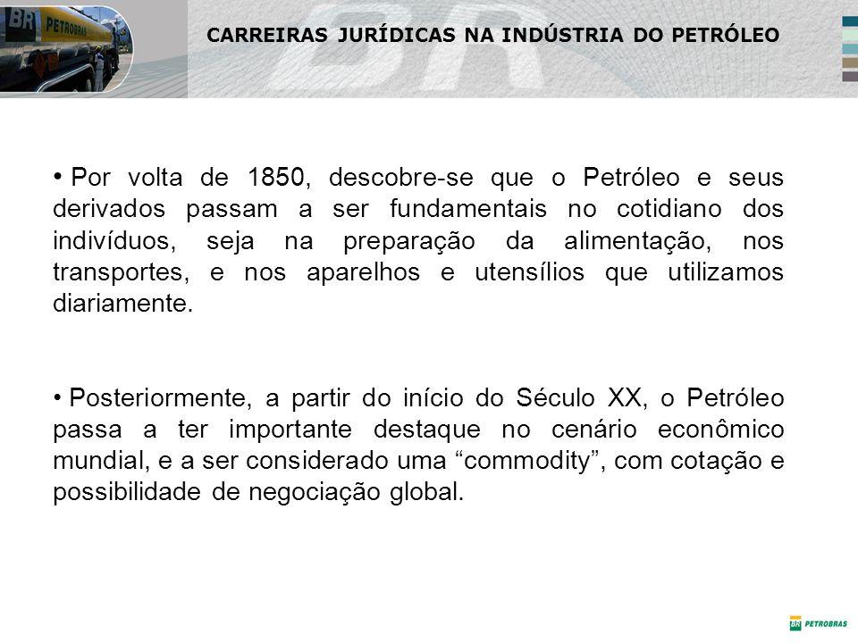 Direito Ambiental Atividade potencialmente poluidora (art.