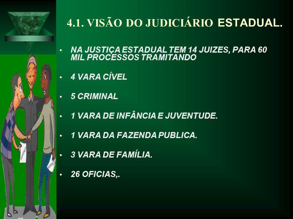4.1.VISÃO DO JUDICIÁRIO ESTADUAL.