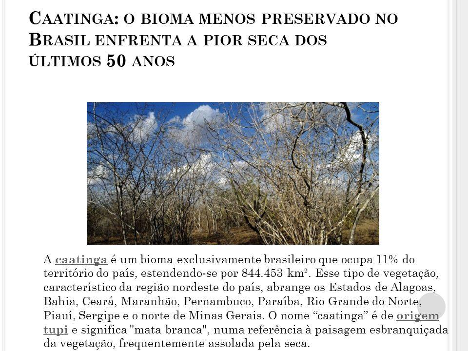 C AATINGA : O BIOMA MENOS PRESERVADO NO B RASIL ENFRENTA A PIOR SECA DOS ÚLTIMOS 50 ANOS A caatinga é um bioma exclusivamente brasileiro que ocupa 11% do território do país, estendendo-se por 844.453 km².