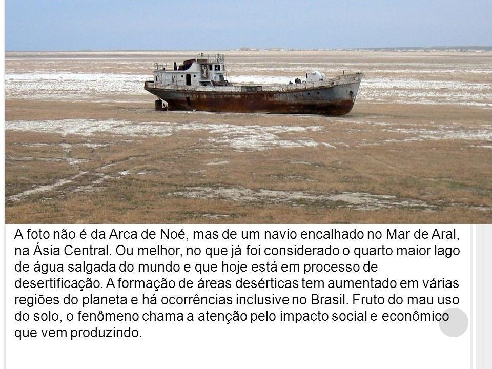 A foto não é da Arca de Noé, mas de um navio encalhado no Mar de Aral, na Ásia Central.