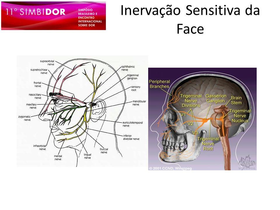 Inervação Sensitiva da Face