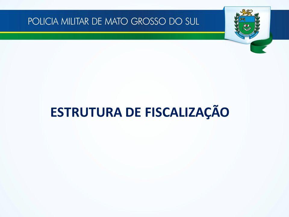 ESTRUTURA DE FISCALIZAÇÃO