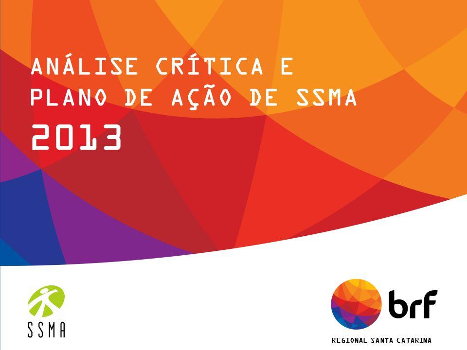 REGIONAL SANTA CATARINA ANÁLISE CRÍTICA E PLANO DE AÇÃO DE SSMA 2013