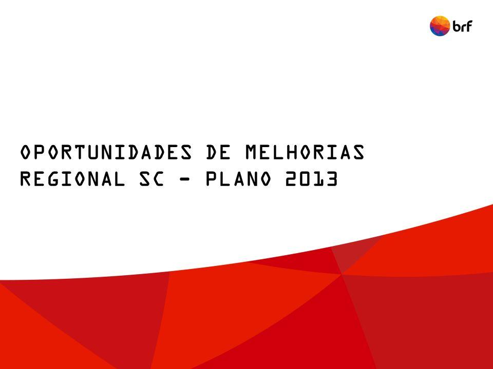 OPORTUNIDADES DE MELHORIAS REGIONAL SC - PLANO 2013